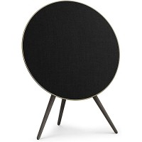 Beoplay A9 - Smoaked Oak: Wifi 1